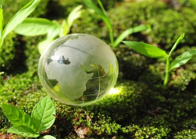 Ostara to be named to GoingGreen Global 200
